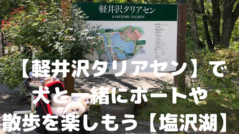 【軽井沢タリアセン】で 犬と一緒にボートや 散歩を楽しもう【塩沢湖】 アイキャッチ