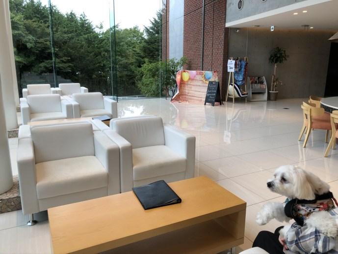 【ホテル凛香】山中湖周辺で犬と泊まれるおすすめホテル【富士五湖】 ロビー