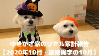 ゆきかざ家のリアル家計報告 【2020年10月・連続黒字の10月】 アイキャッチ