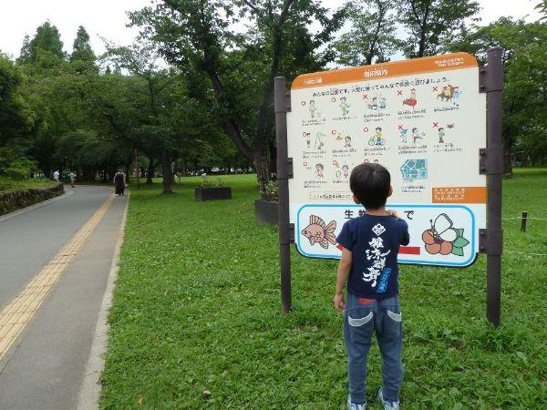 元渕江公園に到着した息子