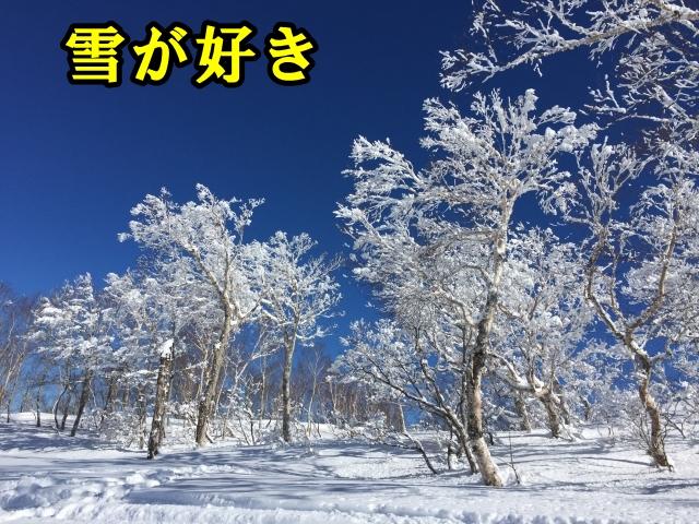 山頂からの滑走。軽井沢プリンスホテルスキー場