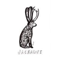 jackalope_lores