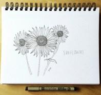 Sunflowers_lores