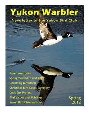 Yukon Warbler Spring 2012