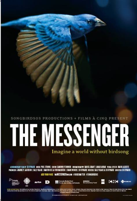 The Messenger is a documentary about the decline of songbirds.