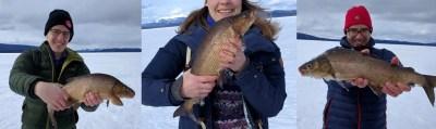 icefish6