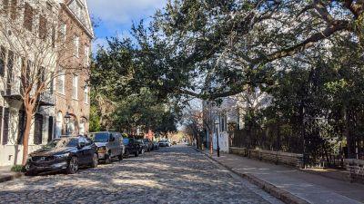 The Spanish Moss in Savannah and Charleston - https://yula.ca