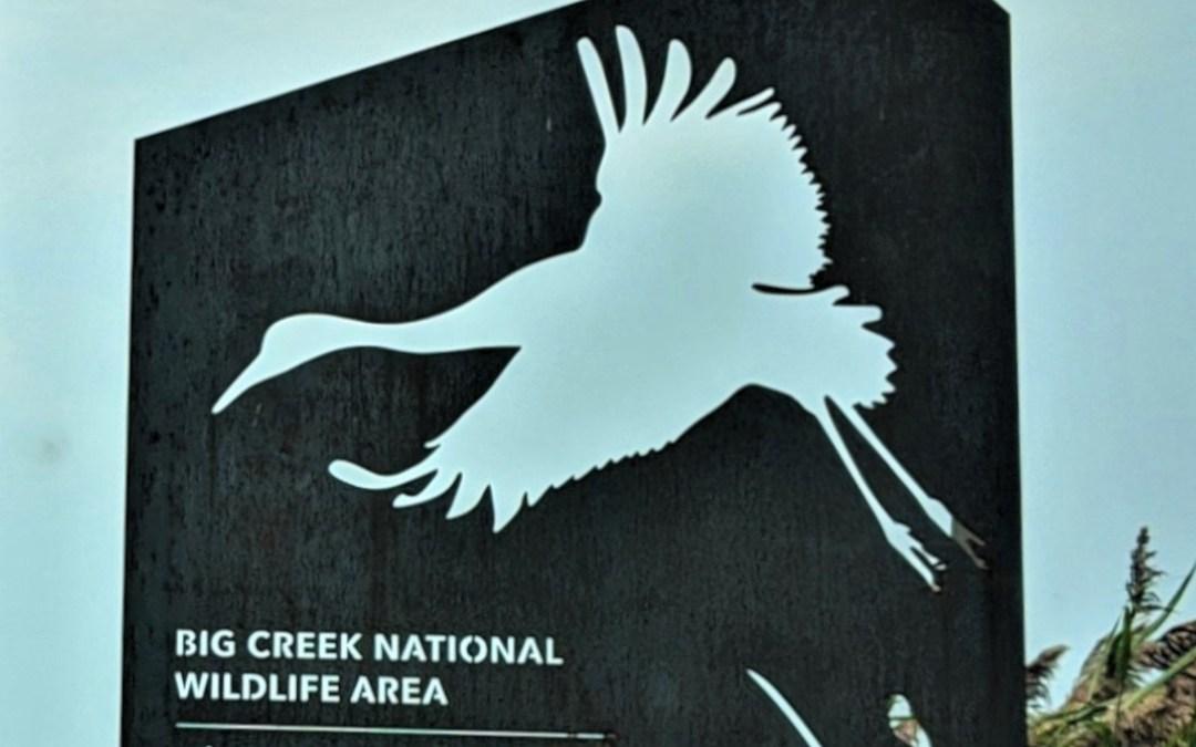 Big Creek National Wildlife Area