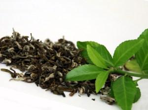 9 izdelkov za ubijanje raka | 9 izdelkov, ki ubijajo raka | zeleni čaj