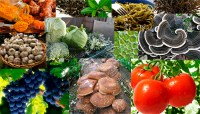 9 cancer-killing products | 9 продуктов убивающие рак
