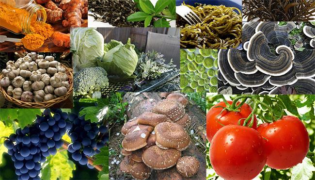 9 izdelkov za ubijanje raka | 9 izdelkov, ki ubijajo raka