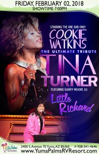 2018-02-02 Tina Turner & Little Richard - Tribute Concert
