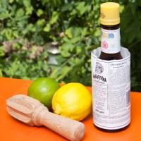 Lemon, lime and bitters