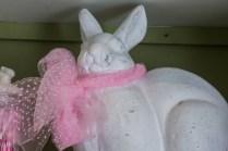y-rabbit5