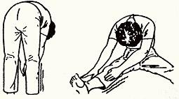 Діагностика сколіозу. Симптоми протрузії поперекового відділу хребта
