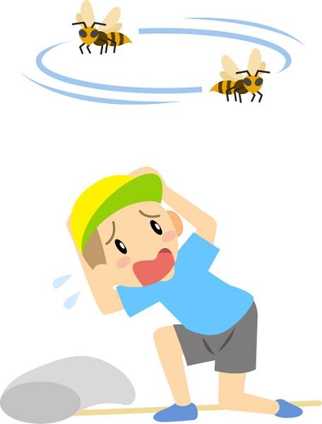 蜂がまとわりつく