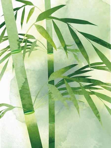 竹の節を見る