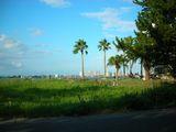 浜松ビーチ