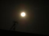 月が一番美しい夜