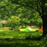 我が家がキャンプを始めた理由
