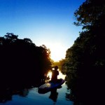 【SUPブログ】西表島観光スポットをサップで体験