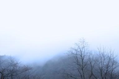 HIJIRIYAMA × kimidori 2014 冬