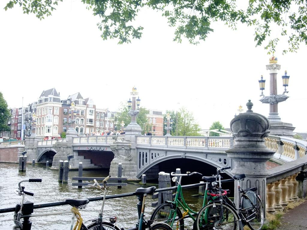 2010 荷蘭   粉紅小綿羊