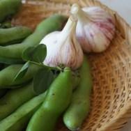 豆板醤・薬味・蚕豆・空豆・天豆・がん豆・一寸豆・お多福豆・豆