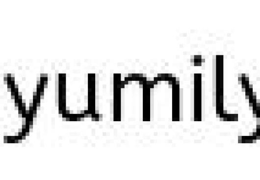 電子申請用紙の入力02