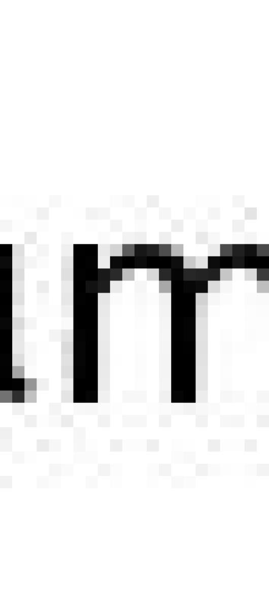 電子申請用紙の入力11