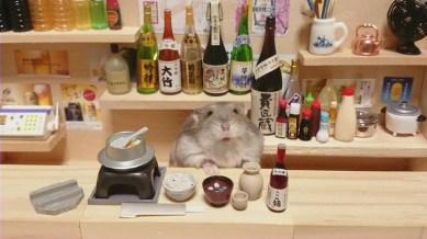 hamster-bartender-miniature-bar-kawanabesatou-21