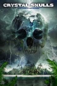 12 กะโหลกหยุดหายนะโลก Crystal Skulls (2014)