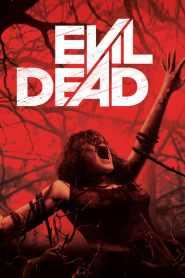 ผีอมตะ Evil Dead (2013)
