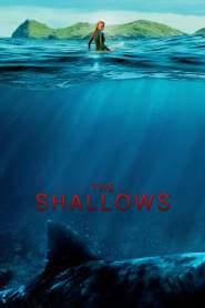 นรกน้ำตื้น The Shallows (2016)