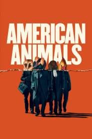 รวมกันปล้น อย่าให้ใครจับได้ American Animals (2018)