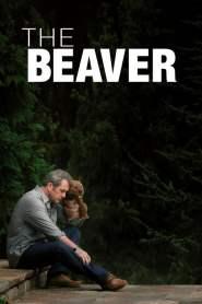 ผู้ชายมหากาฬ หัวใจล้มลุก The Beaver (2011)