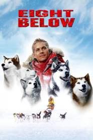 ปฏิบัติการ 8 พันธุ์อึดสุดขั้วโลก Eight Below (2006)