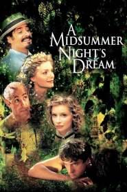 ตำนานฝากรักบรรลือโลก A Midsummer Night's Dream (1999)