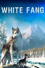 ไอ้เขี้ยวขาว White Fang (2018)