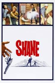 เพชฌฆาตกระสุนเดือด Shane (1953)