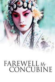 หลายแผ่นดิน..แม้สิ้นใจก็ไม่ลืม Farewell My Concubine (1993)