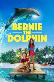 เบอร์นี่ โลมาน้อย หัวใจมหาสมุทร Bernie the Dolphin (2018)