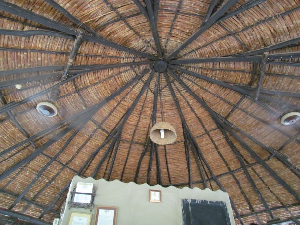 ceiling of the canteen - view from inside