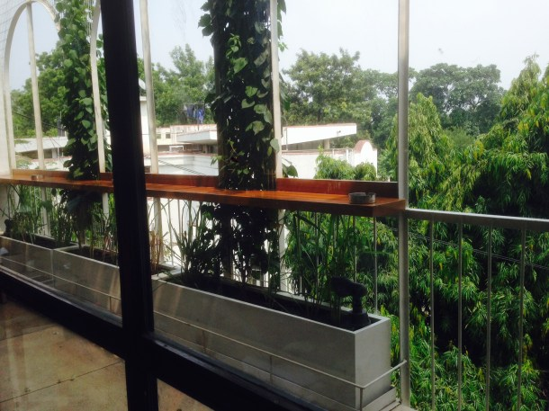 view of tree tops in Hauz Khas village - as seen from dining area