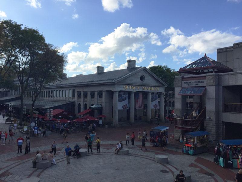 The Salty Dog boston