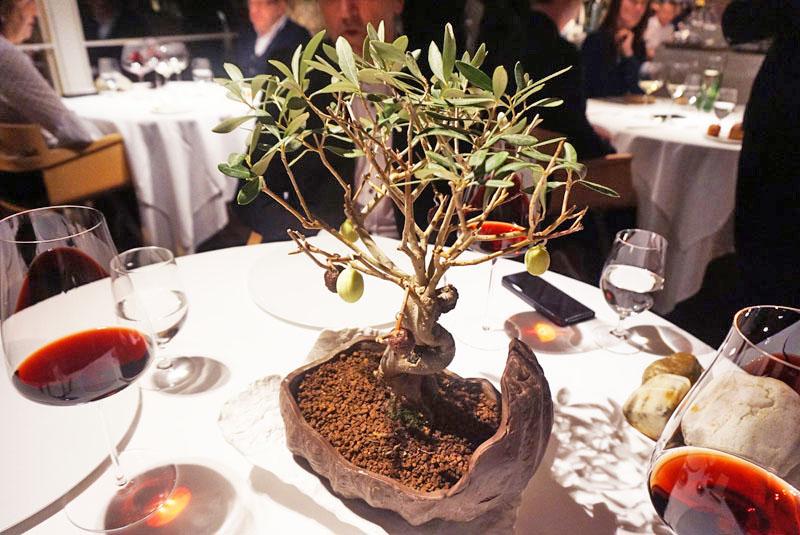 Bonsai de Olivo, entrante del Menú Degustación 2018 de El Celler de Can Roca.