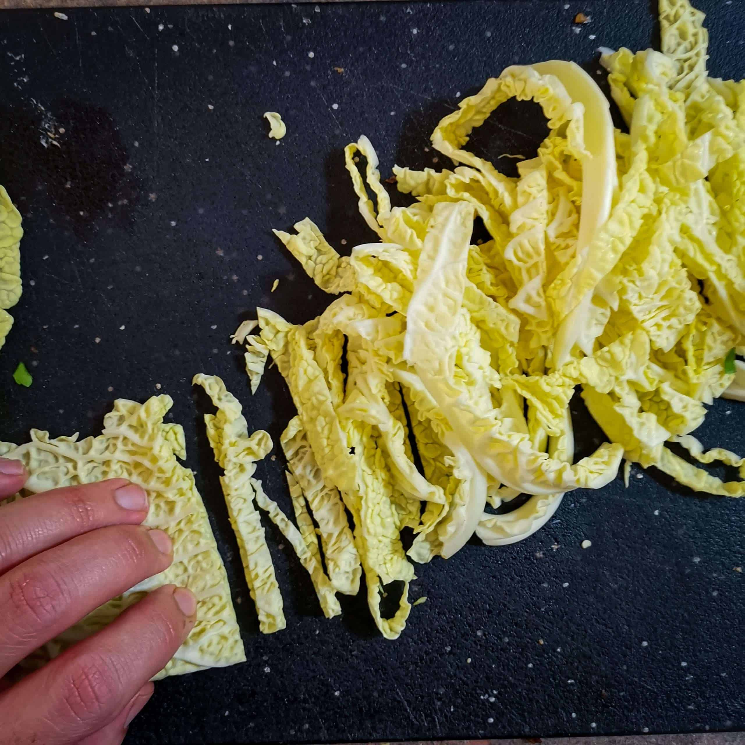 Savoy cabbage leaf sliced into noodles