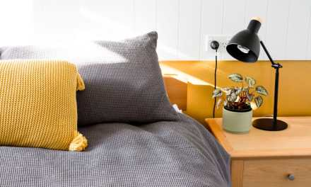 Free CoroPilo Pillow