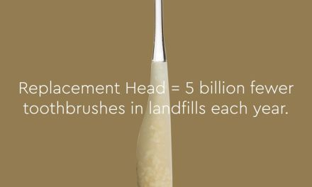 Free Toothbrush with Replaceable Head