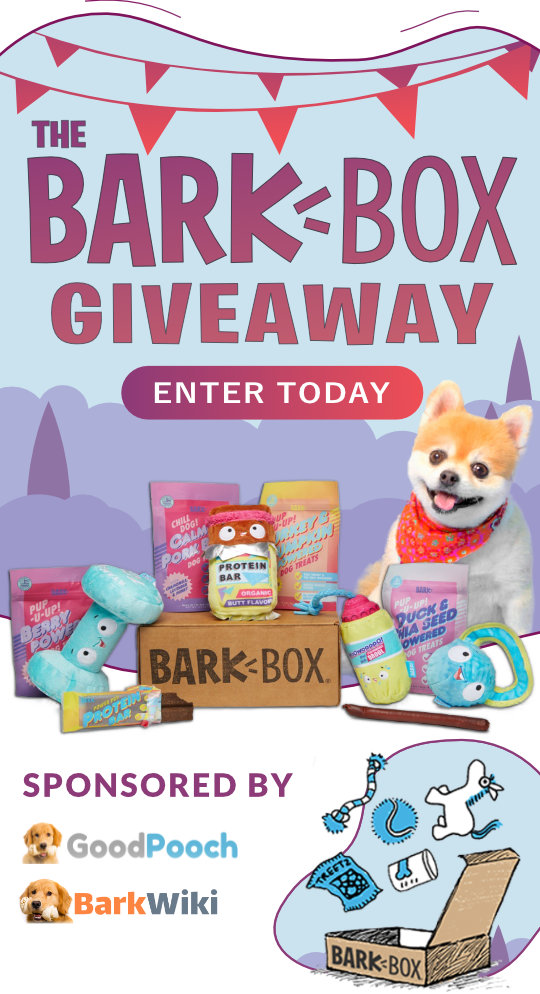 the-bark-box-giveaway